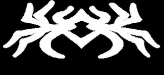 Spider Wall Systems Logo