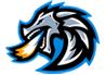Dragon Steel Inc-logo