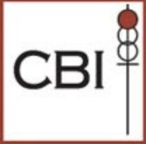 CBI General Contractors-logo