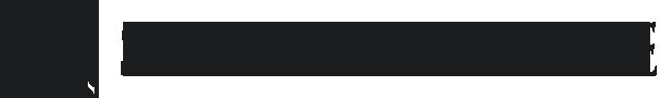 Steinbridge Group-logo