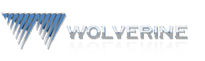 Wolverine Real Estate Services-logo