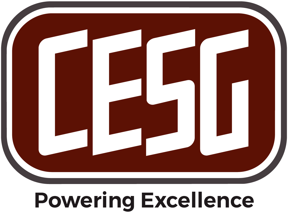 Critical Electric Systems Group Logo