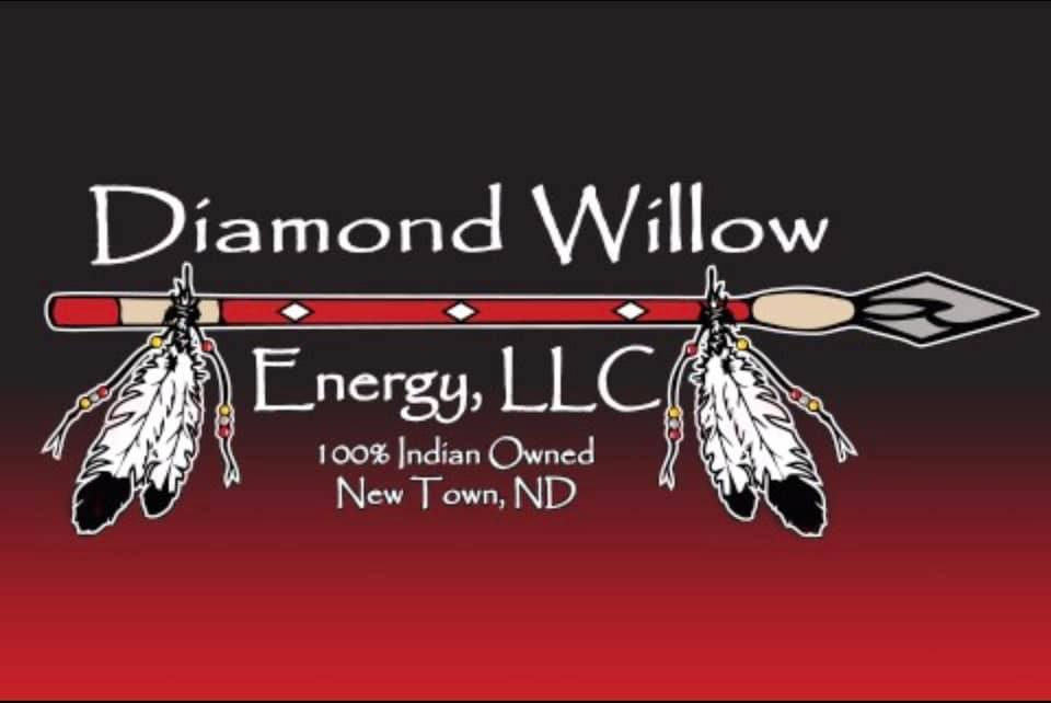 Diamond Willow Energy LLC-logo