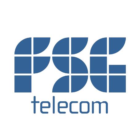 FSG Telecom Logo